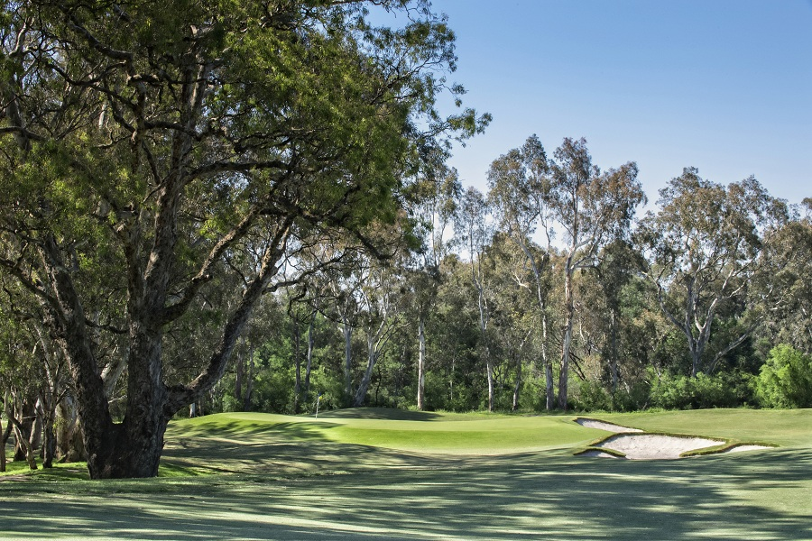 16th Hole (Reduced Size)