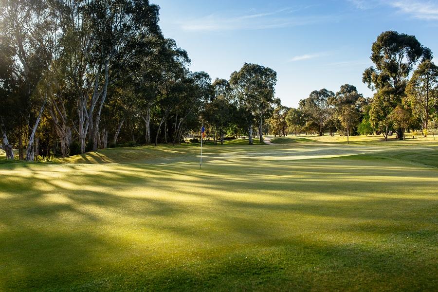 Kew Golf Club Stills Dec 2018-20