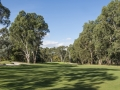3rd Fairway (Reduced Size)